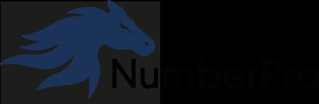 Number Pro logo